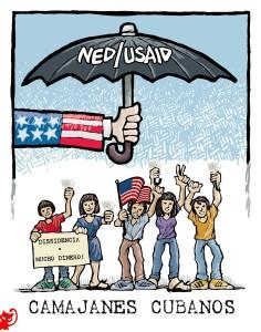 NED_USAID