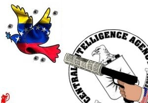 press-venezuela-paloma-spari-300x208