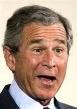 bush-idiot