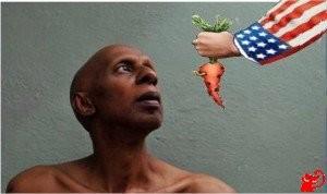 farina-medaglia carota