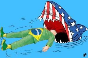 brasil y tiburon USA