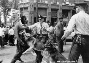 contra guillermo farinas perro USA