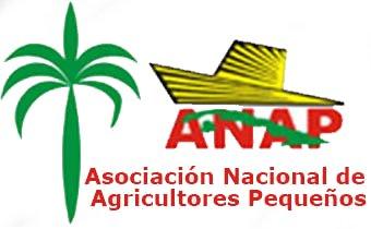 Buró Nazionale dell'ANAP – Dichiarazione | progetto cubainformAzione